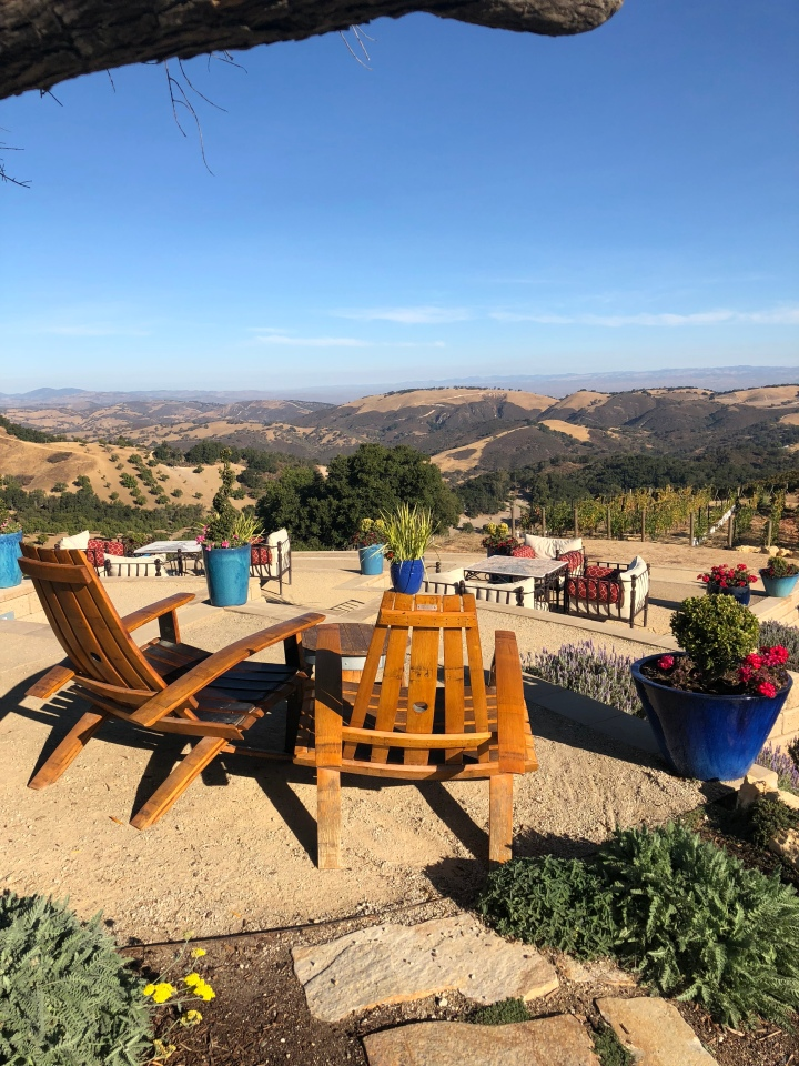 Daou Winery view